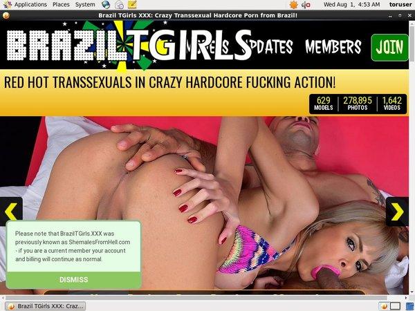 Tgirls Brazil Xxx
