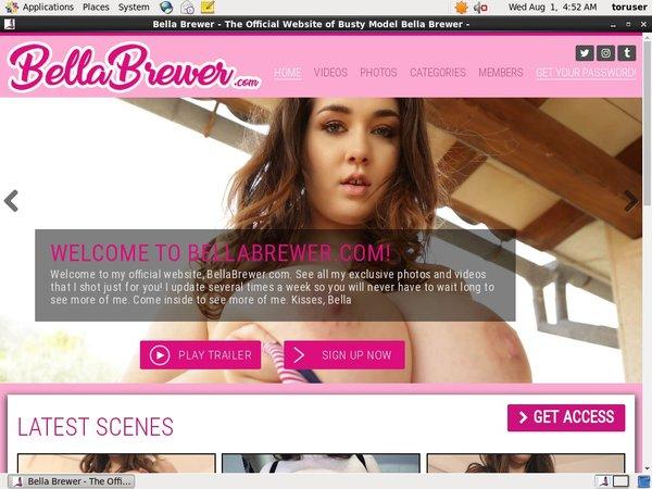 Bella Brewer Online