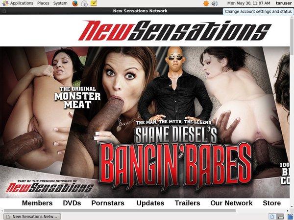 Shane Diesel Penny